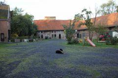 2013-10-04 Werelddierendag op de boerderij