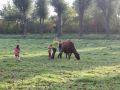 2013-10-04_Werelddierendag_op_de_boerderij_014