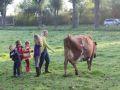 2013-10-04_Werelddierendag_op_de_boerderij_015