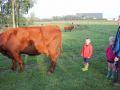 2013-10-04_Werelddierendag_op_de_boerderij_016