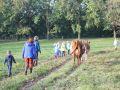 2013-10-04_Werelddierendag_op_de_boerderij_018