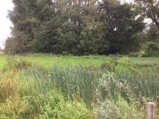 2018-09-09_Heulebeekwandeling_007
